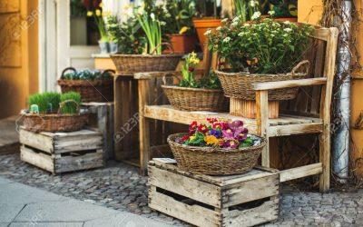 Flores, letras y ofertas, en la Primavera de Santiago Centro
